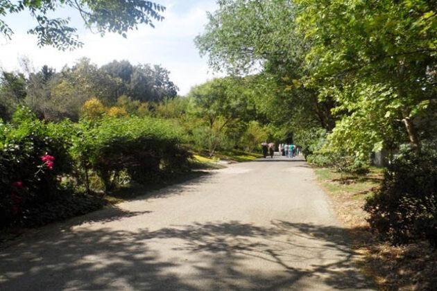 National Botanical Garden4148