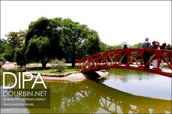 National Botanical Garden55