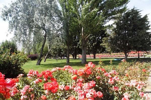 National Botanical Garden_4084