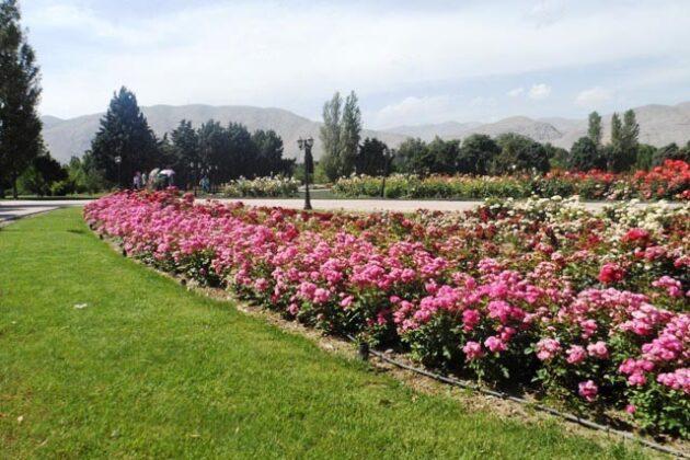 National Botanical Garden_4088