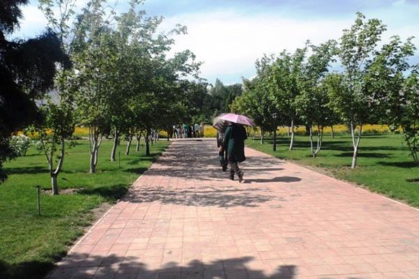 National Botanical Garden_4101