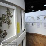Botanical Museum