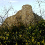 Markooh Castle401