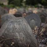 Mystery cemetery _946