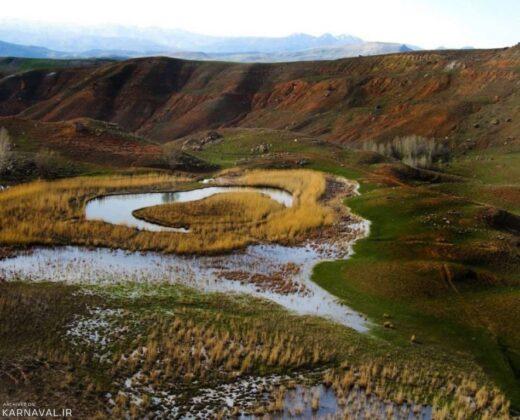 Moving Grass in Northwestern Iran