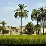 southeastern Iran12