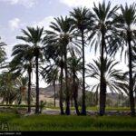 southeastern Iran19