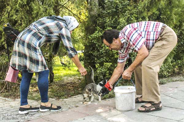 kindness towards animals Cesar chavez — 'kindness and compassion towards all living things is a   cruelty, whether it is directed against human beings or against animals, is not the .