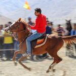 Horse show07