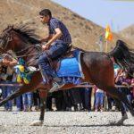 Horse show21