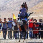 Horse show23