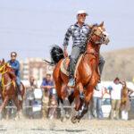 Horse show30