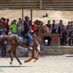 Horse show34