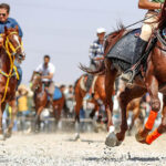 Horse show38