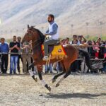 Horse show63