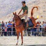 Horse show67