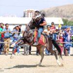 Horse show78