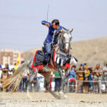 Horse show91