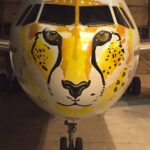 Iranian cheetah aircraft
