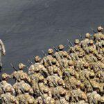 Military parade150
