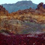 red soil24622