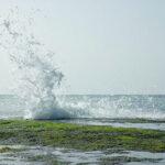 rocky coast5