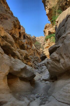 Amazing Nature on Qeshm Island