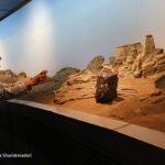 Meteorite_380