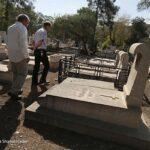 cemetery3689071_288