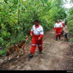dog training -11