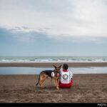 dog training -14