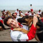 dog training -16