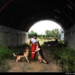 dog training-8