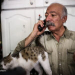 old man and cats_134