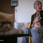 old man and cats_788