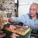 old man and cats_809