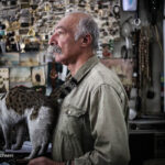 old man and cats_839