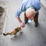 old man and cats_918