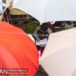 umbrellas1620