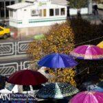 umbrellas1717