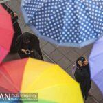umbrellas2119