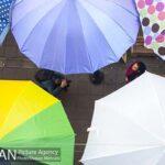 umbrellas2216