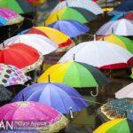 umbrellas2614