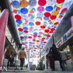umbrellas3112