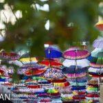 umbrellas394