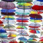 umbrellas715