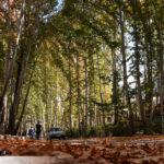 Baba-Aman Park13