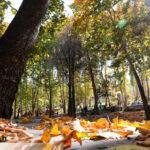 Baba-Aman Park3