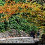 Kaboud-Val Waterfall1448435653685_isna-8