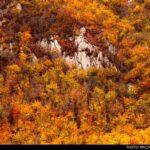 Kaboud-Val Waterfall1448435653904_isna-10